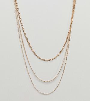 ASOS Curve Ожерелье-цепочка в несколько рядов DESIGN. Цвет: золотой