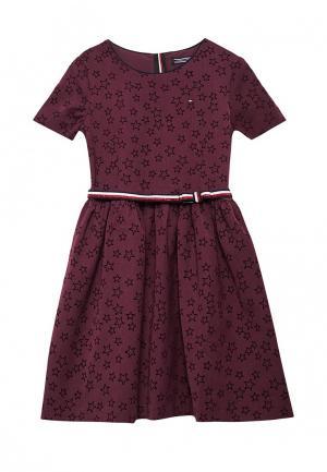 Платье Tommy Hilfiger. Цвет: фиолетовый