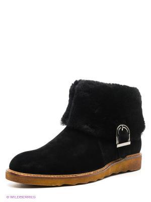 Ботинки Grand Gudini. Цвет: черный