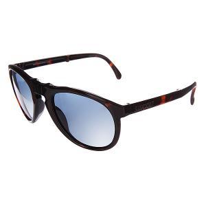 Очки женские  Shiny Tortoise Sunpocket. Цвет: черный,бордовый