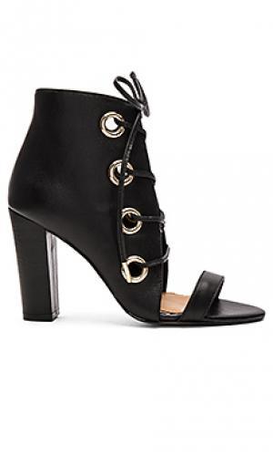 Туфли на каблуке proximity JAGGAR. Цвет: черный