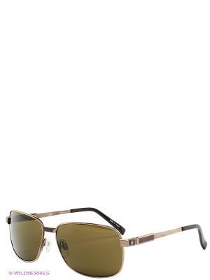 Солнцезащитные очки Dunhill. Цвет: коричневый
