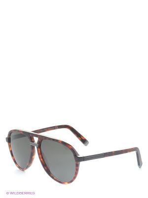 Солнцезащитные очки DQ 0070 54N Dsquared. Цвет: темно-серый, бордовый