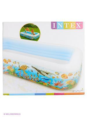 Надувной бассейн Фэмили Intex. Цвет: белый, голубой