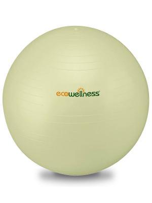 Мяч гимнастический ABS диам 65 см c насосом Ecowellness. Цвет: светло-зеленый