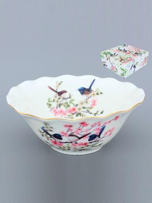 Салатник Райские птички Elan Gallery. Цвет: белый, синий, розовый