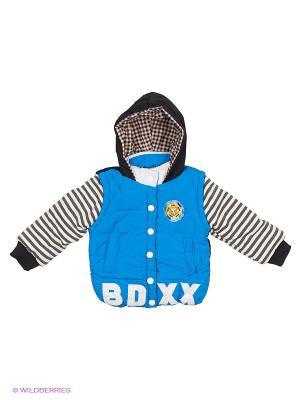 Куртка Happy Bear. Цвет: голубой, белый, черный