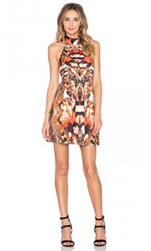 Платье lucidity Ringuet. Цвет: оранжевый