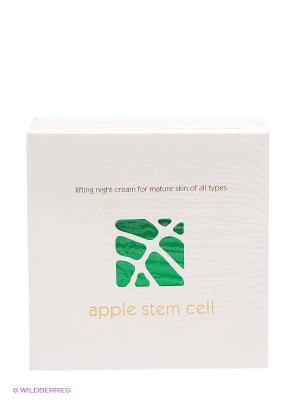 Ночной крем Apple Stem Cell Beauty Style. Цвет: белый