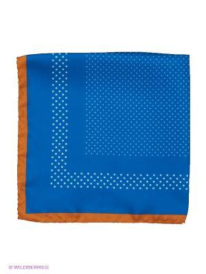 Платок-паше Troy collezione. Цвет: синий, терракотовый