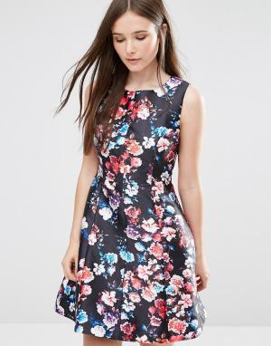 Darling Короткое приталенное платье Catriona. Цвет: черный