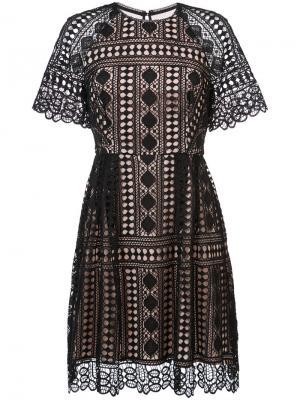 Платье с кружевом Nicole Miller. Цвет: чёрный