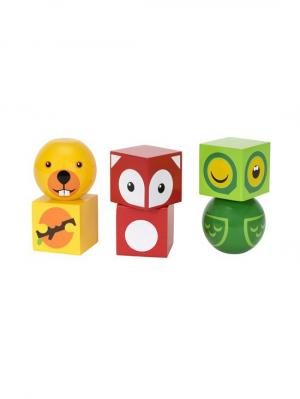 Деревянные кубики на магнитах с животными,6 дет.,20х5х14см,кор. BRIO. Цвет: прозрачный