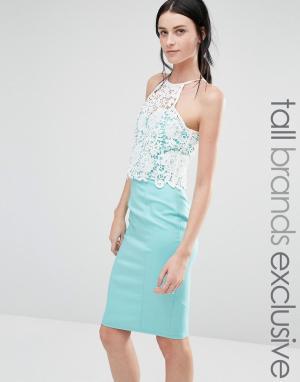 Paper Dolls Tall Облегающее платье с контрастным кружевным лифом. Цвет: зеленый