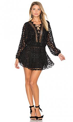 Кружевное мини-платье cicci Karina Grimaldi. Цвет: черный