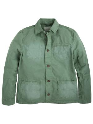 Куртка PEPE JEANS LONDON. Цвет: оливковый