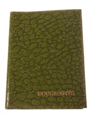 Обложка для автодокументов, зеленый крокодил Радужки. Цвет: зеленый