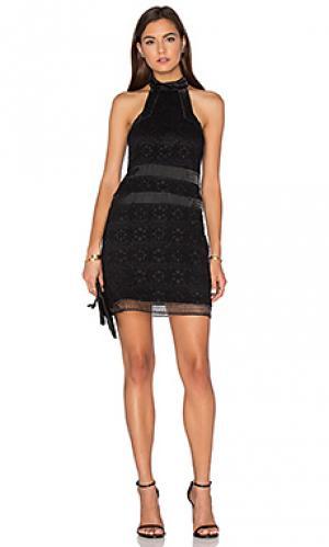 Короткое платье robin Alexis. Цвет: черный