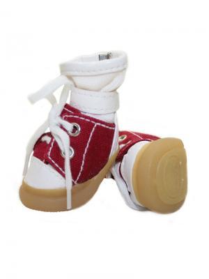 Ботинки для собак TRIOL. Цвет: белый