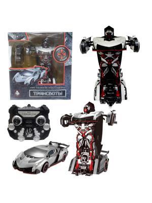 Робот на р/у 2,4GHz, трансформирующийся в спортивный автомобиль, серебристый 1Toy. Цвет: серый