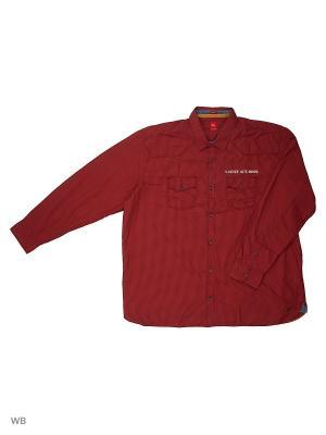 Рубашка S.OLIVER. Цвет: горчичный, золотистый