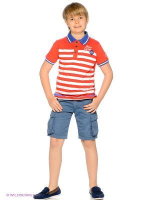 Шорты American Outfitters. Цвет: синий