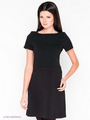 Платье COMPAGNIA ITALIANA. Цвет: черный
