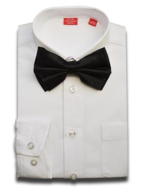 Рубашка Imperator. Цвет: белый