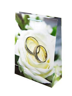 Комплект пакетов из 12шт. 22*31см Русские подарки. Цвет: белый, светло-серый, кремовый