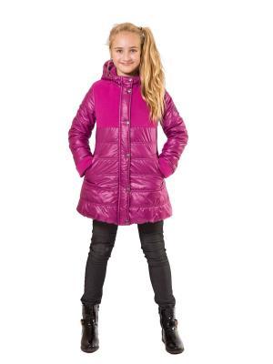 Пальто SAIMA. Цвет: фуксия