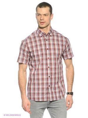 Рубашка Finn Flare. Цвет: красный, серый