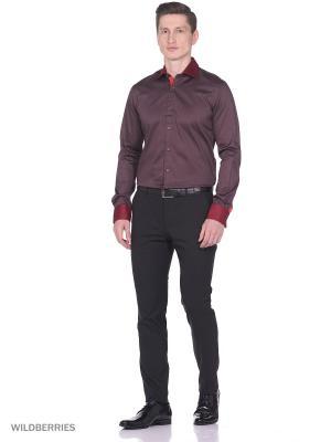 Рубашка Alex DANDY. Цвет: коричневый, бордовый
