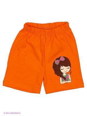 Шорты Bonito kids. Цвет: оранжевый