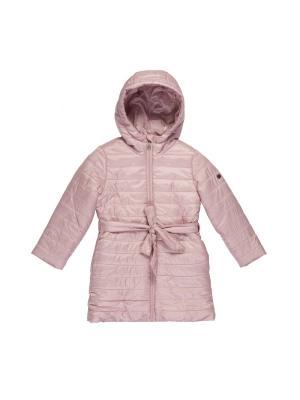 Пальто Button Blue. Цвет: розовый