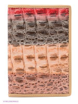 Обложка Piero. Цвет: красный, бежевый, серо-коричневый