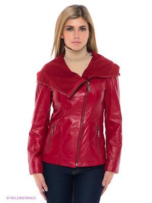 Куртка STEFANO FERRI. Цвет: красный
