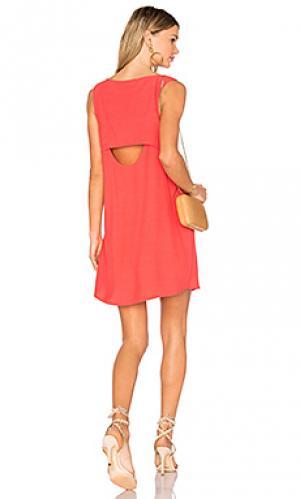 Платье jodi BB Dakota. Цвет: красный
