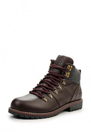 Ботинки Animal. Цвет: коричневый