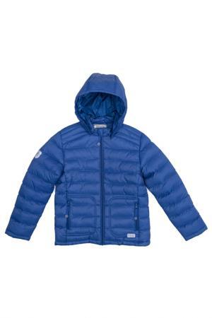 Куртка Scool S'cool. Цвет: синий