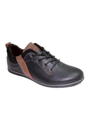 Спортивные ботинки GassA. Цвет: черный