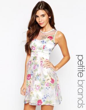Lipstick Boutique Petite Платье для выпускного с вырезом сердечком и цветочным принтом. Цвет: мульти