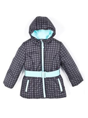 Куртка Coccodrillo. Цвет: серый