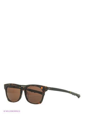 Солнцезащитные очки CX 804 GR CEO-V. Цвет: зеленый
