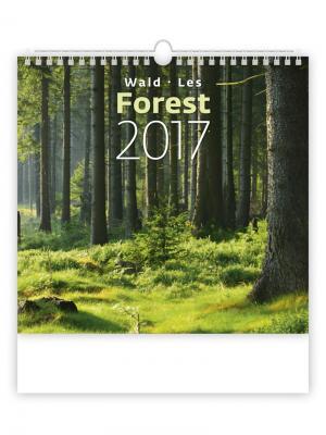 Календарь: Forest (Лес) 8595230639141 ст.10 КОНТЭНТ. Цвет: белый