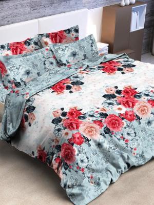 Комплект постельного белья, 2,0-сп Letto. Цвет: голубой, красный, розовый