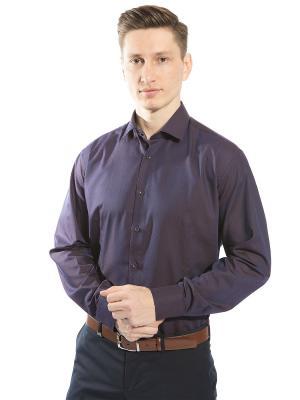 Рубашка GroStyle. Цвет: коричневый, фиолетовый
