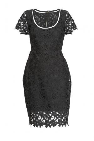 Кружевное платье 167638 Cristina Effe. Цвет: черный