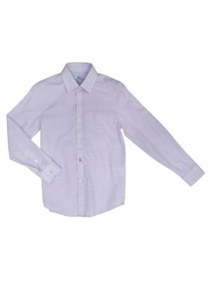 Рубашки BORELLI. Цвет: фиолетовый