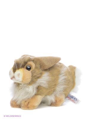 Кролик Hansa. Цвет: бежевый