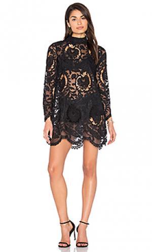 Кружевное платье city lights LIONESS. Цвет: черный